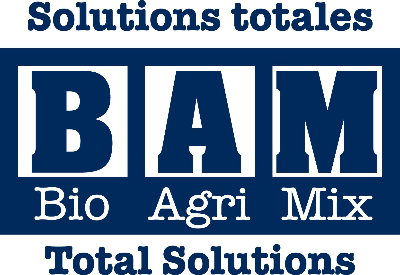 https://aqinac.com/wp-content/uploads/2019/11/BAM-Solutions-Tag-BIL-logo-1.jpg